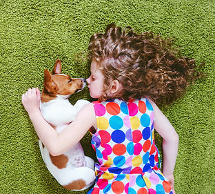 Little girl embracing puppy jack russell