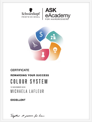 Colour System Certificate.png