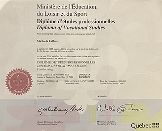 Diploma of Vocational Studies Quebec.HEI