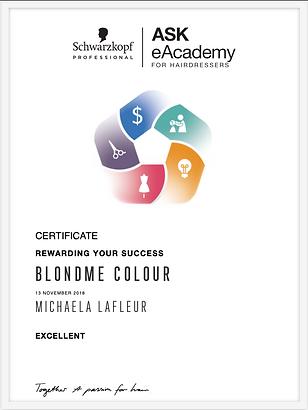 BlondMe Colour Certificate.png