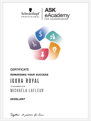 Igora Royal Certificate.png