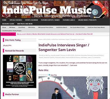 indiepulseINT.jpg