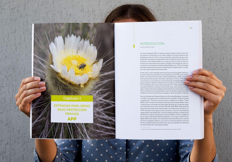 Publicacion2.jpg