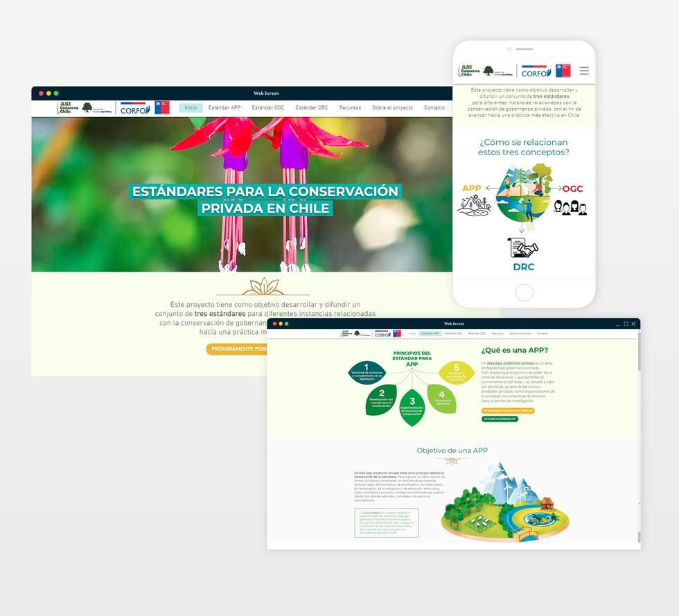 WEB-Estandares_edited.jpg