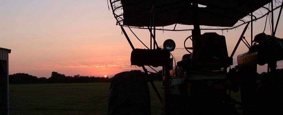 A beautiful sunset on Buddy's farm