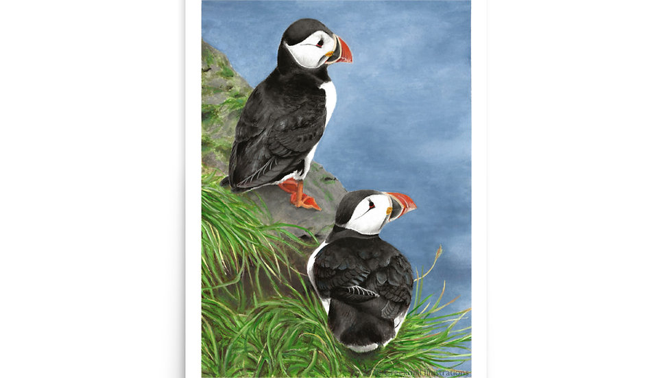 Puffin Pair Poster
