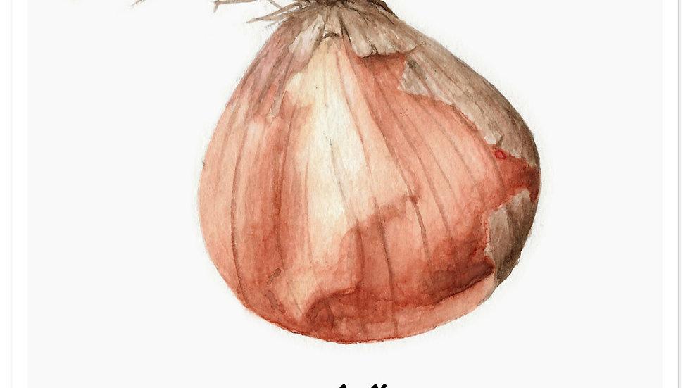 Just a lil' onion! Sticker