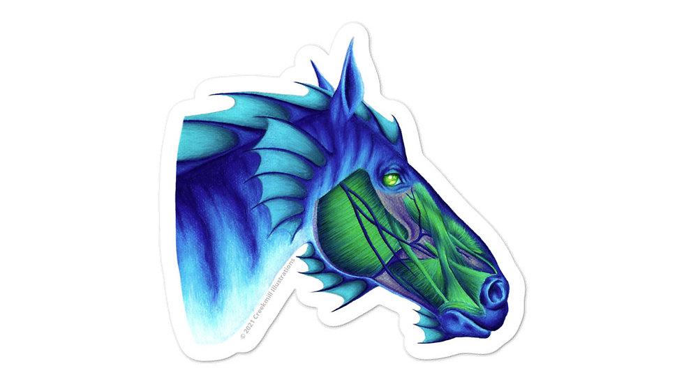 Hippocampus - Fantasy Horse Anatomy Sticker