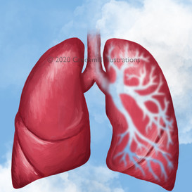 The Air in My Lungs (sky)