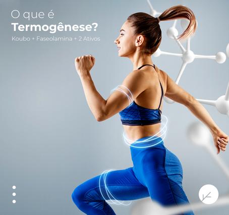 O que é Termogênese?