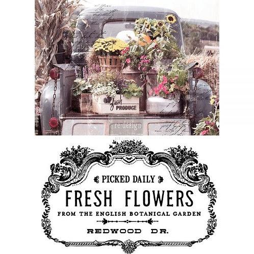 FRESH FLOWERS 24X34