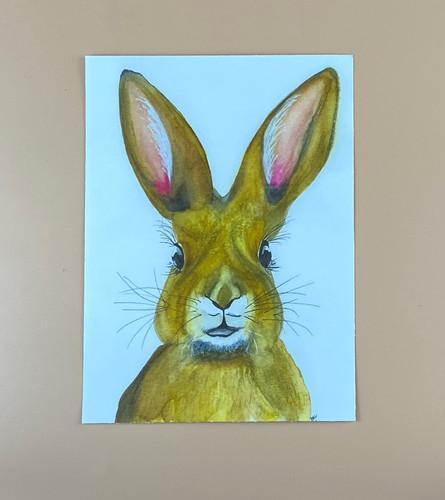 Mischevious Bunny