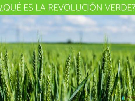 Revolución Verde: Ventajas y desventajas