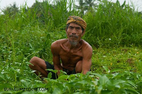Working class hero - Indonésie