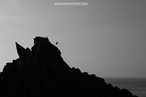 Fly away - Pointe du Raz