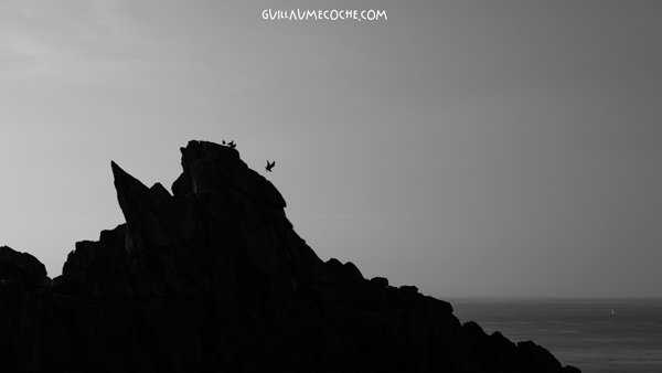 Fly away - Pointe du Raz