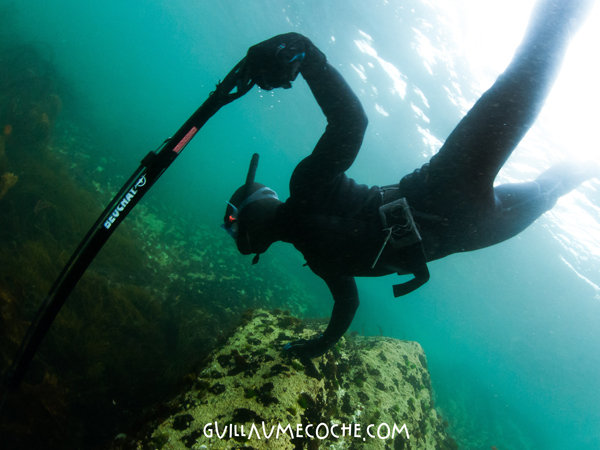 Spearfishing - Quiberon