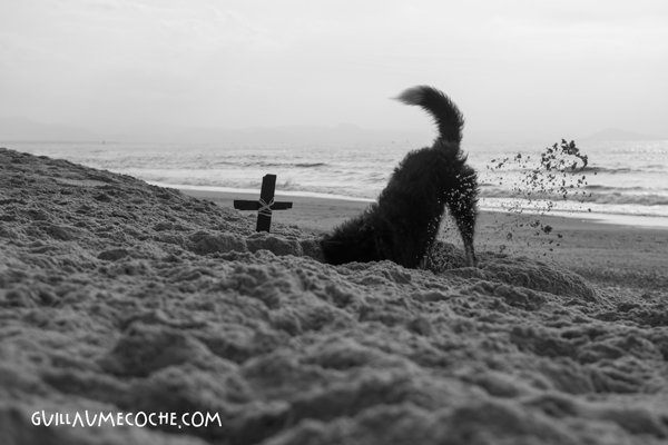 Exhumation - France