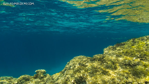 Mirror - Balear islands