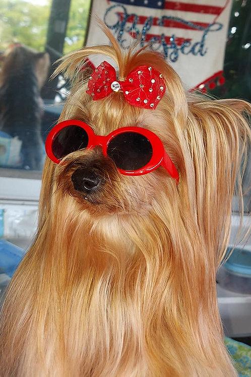 Retro Oval Pet Sunglasses