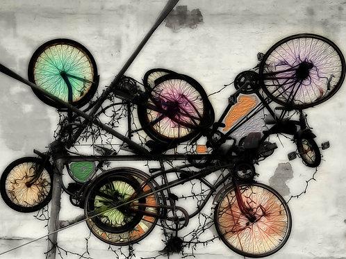 Family Bike Rack