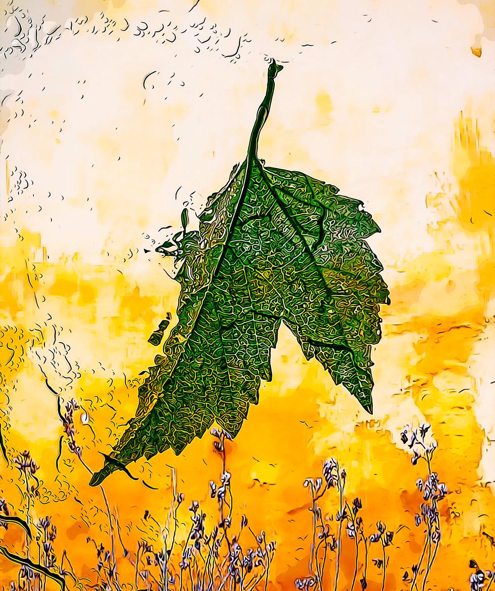 Liquid Leaf, Acrylic Print 24x36