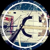 Catamaran Vénus 37 lazy lisbon cruises