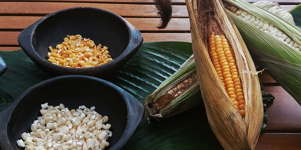 Embera: Aventura Gastronómica en Concepción