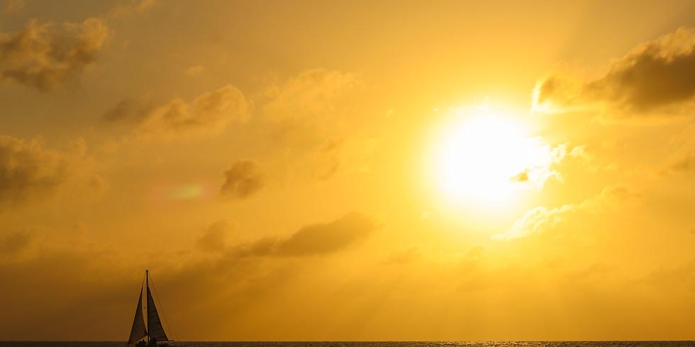 Isla Fuerte: Siembra de Manglares
