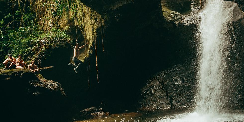 Cueva del Esplendor: Jardin