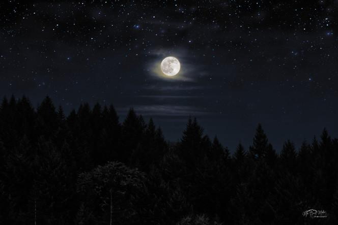 Willamina Moon.jpg