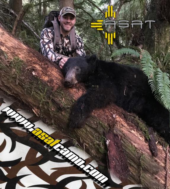 asat bear ad.jpg