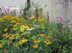 Garden at Benton House