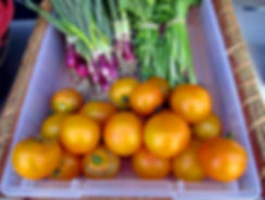 Faremrs-Market-veggies-2.jpg