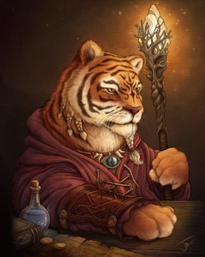 Tiger Wizard