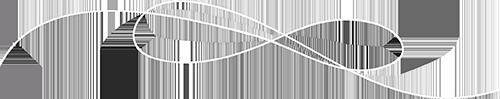 transparent logo white 500px.png