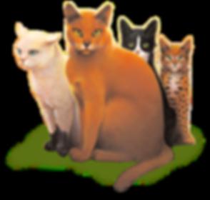Warrior Cats2.png