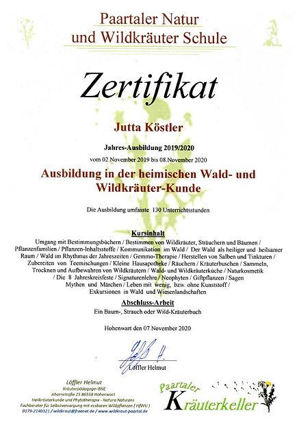 Wald_Wildkräuterkunde.jpg