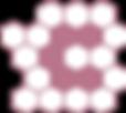 DaaC Logo.png
