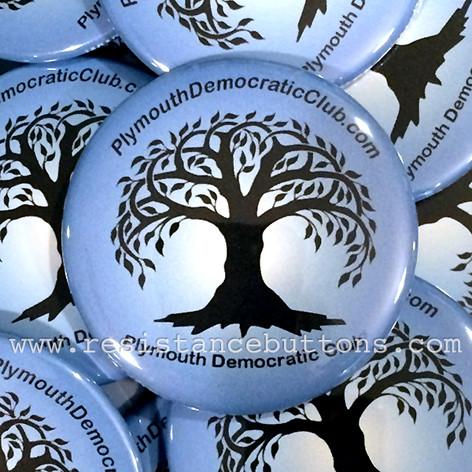 Plymouth Democratic Club