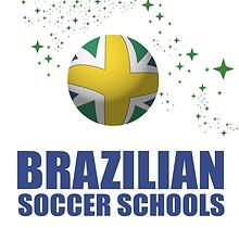 BSS Logo Stars.PNG