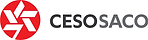 CESO logo.png