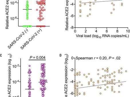 SARS-COV-2 en niños: presentación clínica, infectividad y respuesta inmunitaria