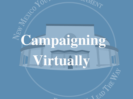 Campaigning Virtualy