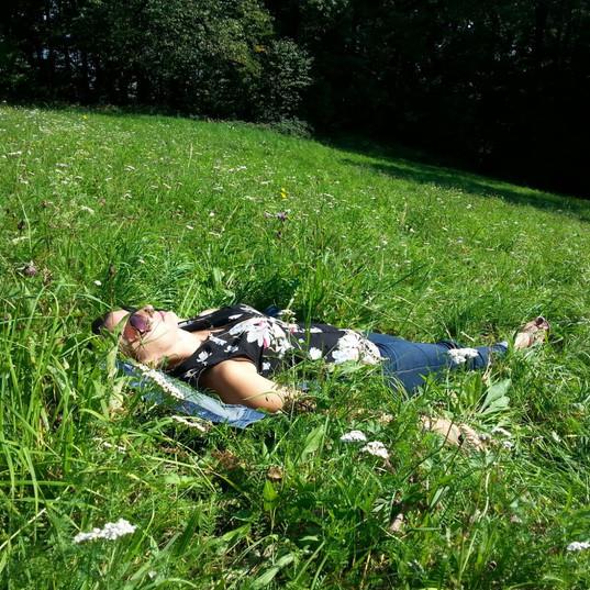 Meadow Grass - Lawn Alternative