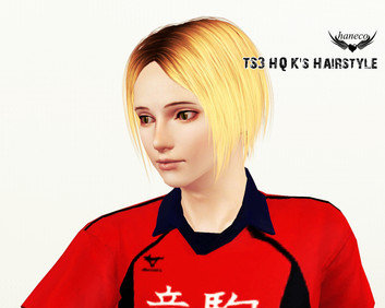 TS3 HQ K's Hairstyle