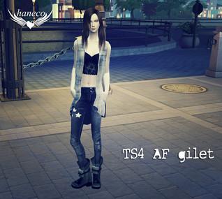 TS4 AF gilet