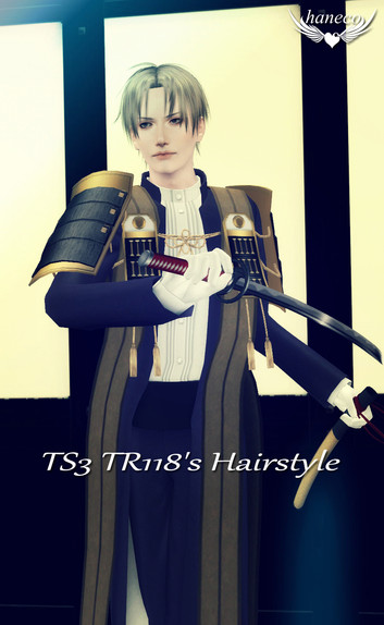 TS3 TR118's Hairstyle