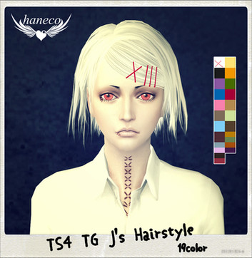 TS4 TG J's Hairstyle