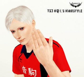 TS3 HQ L's Hairstyle